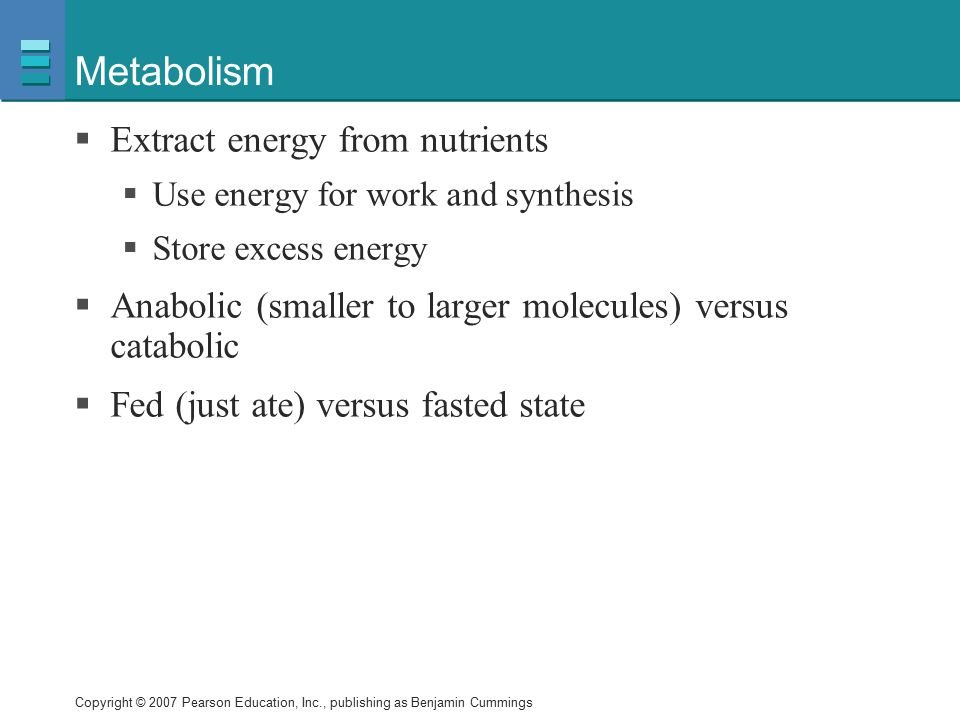 Metabolism Extract energy from nutrients