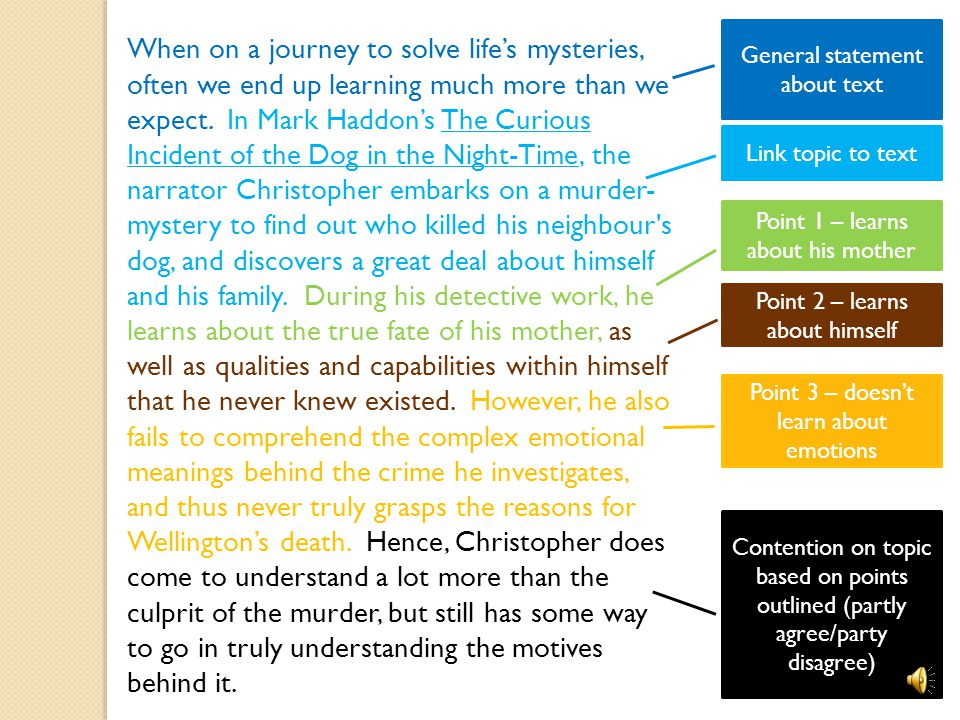 thesis statements for the curious incident of the dog in the night-time