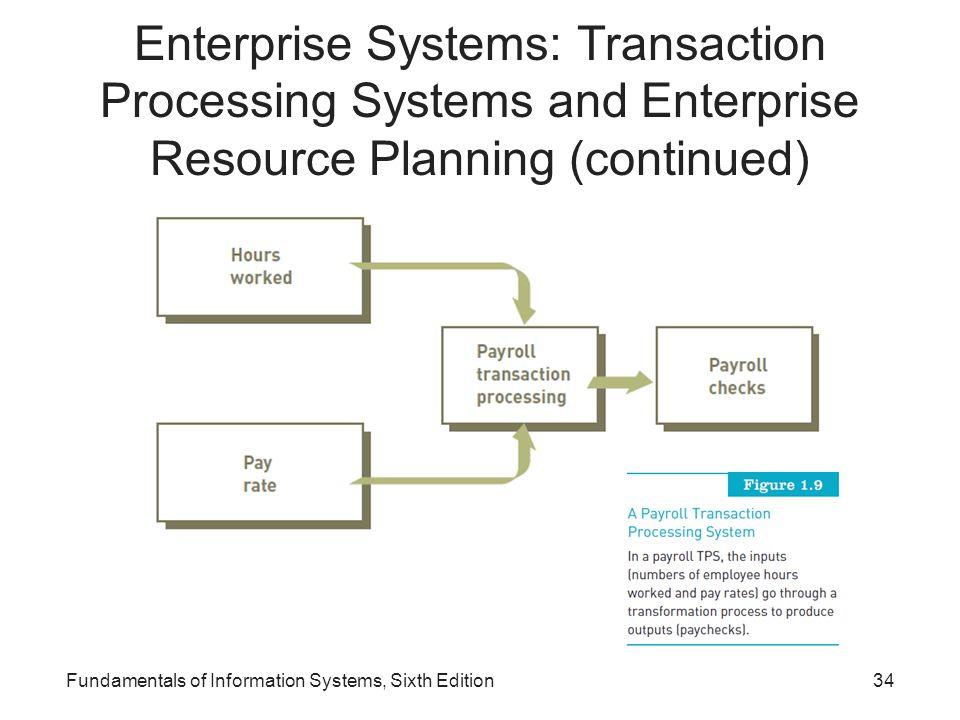 Enterprise Systems: Transaction Processing Systems and Enterprise Resource Planning (continued)