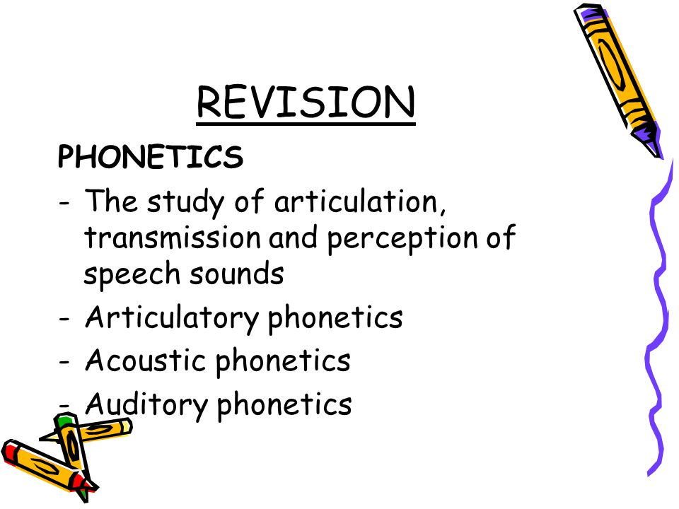 REVISION PHONETICS. The study of articulation, transmission and perception of speech sounds. Articulatory phonetics.