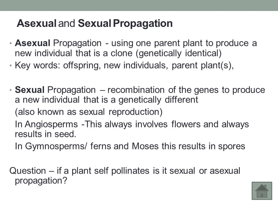 Plant propagation asexual reproduction