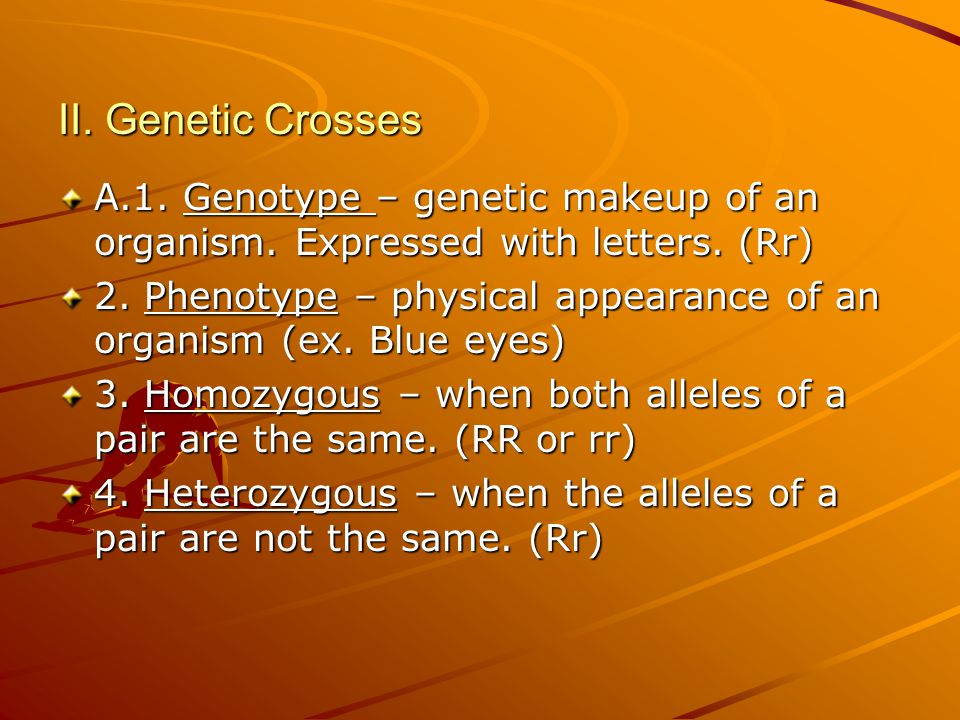 Genetic Makeup Of An Organism Custom Chap 6060 Fundamentals Of Genetics Ppt Download