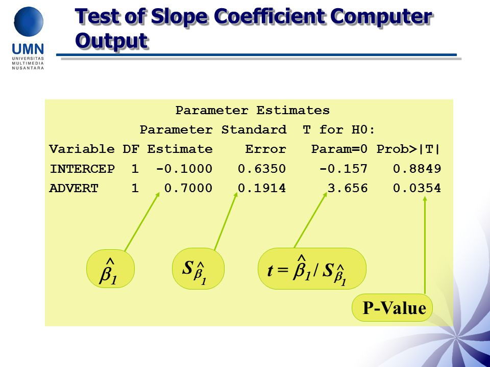 Test of Slope Coefficient Computer Output