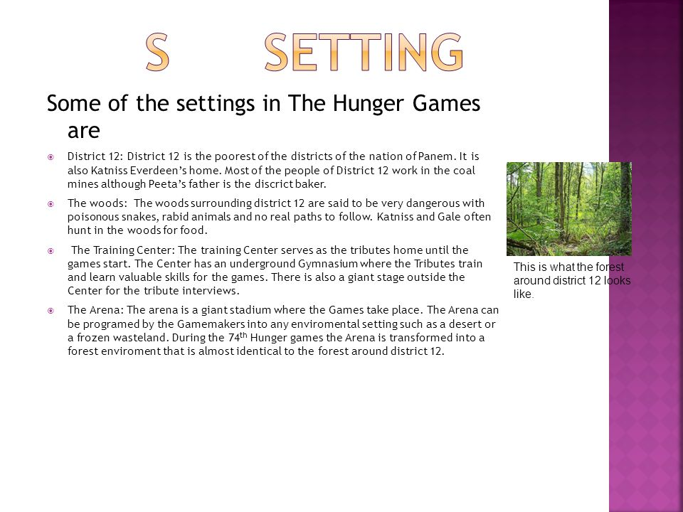 is the hunger games real