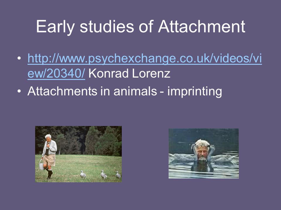 Early studies of Attachment