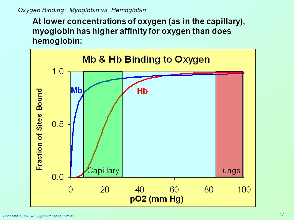 Hb Transport Diagram Of Oxygen - Block And Schematic Diagrams •