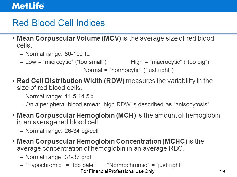 Understanding Complete Blood Counts The ABCs of CBCs