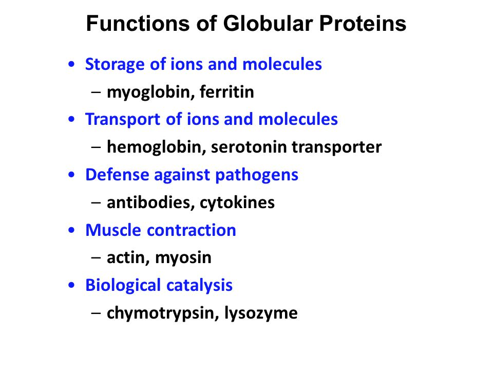 protein function –binding - ppt download