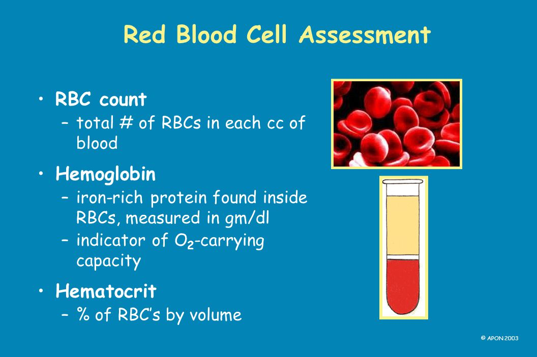 Red Blood Cell Assessment
