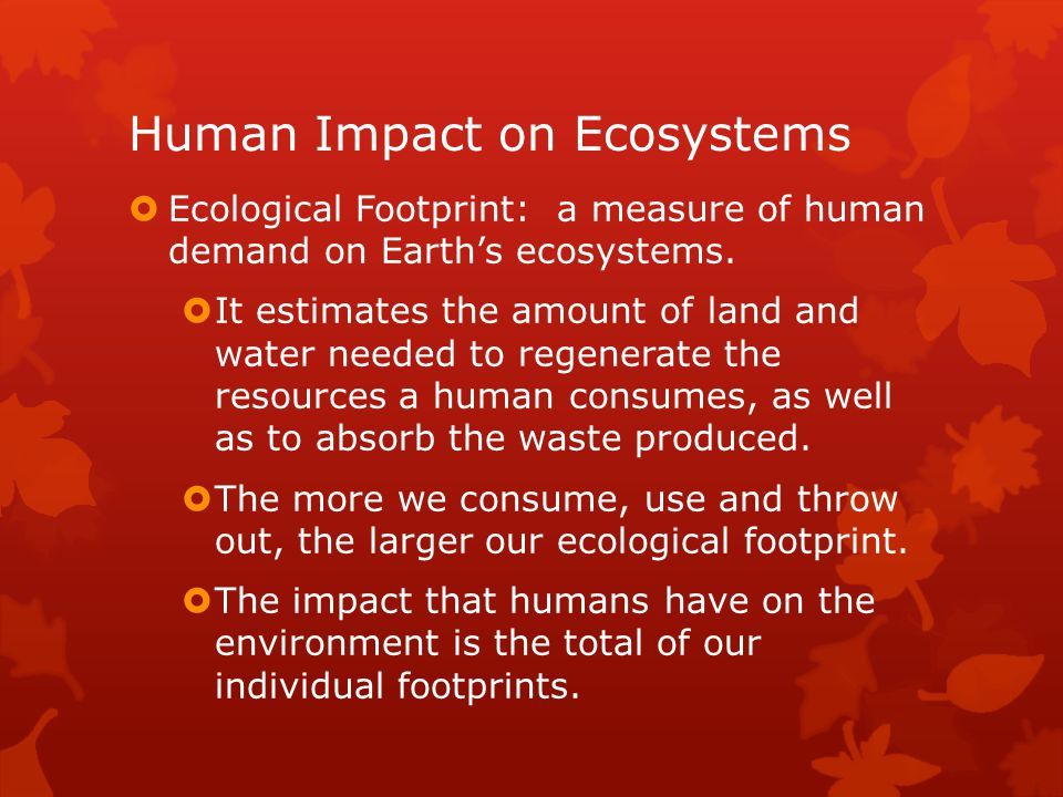 our impact on the environment essay Technology may be blamed for a number of mishaps in our ecological balance however it has its own positive points due to technology the paper consumption on a whole has reduced all records and data are now stored in computers eliminating the use of paper this in turn leads to cutting of a less.