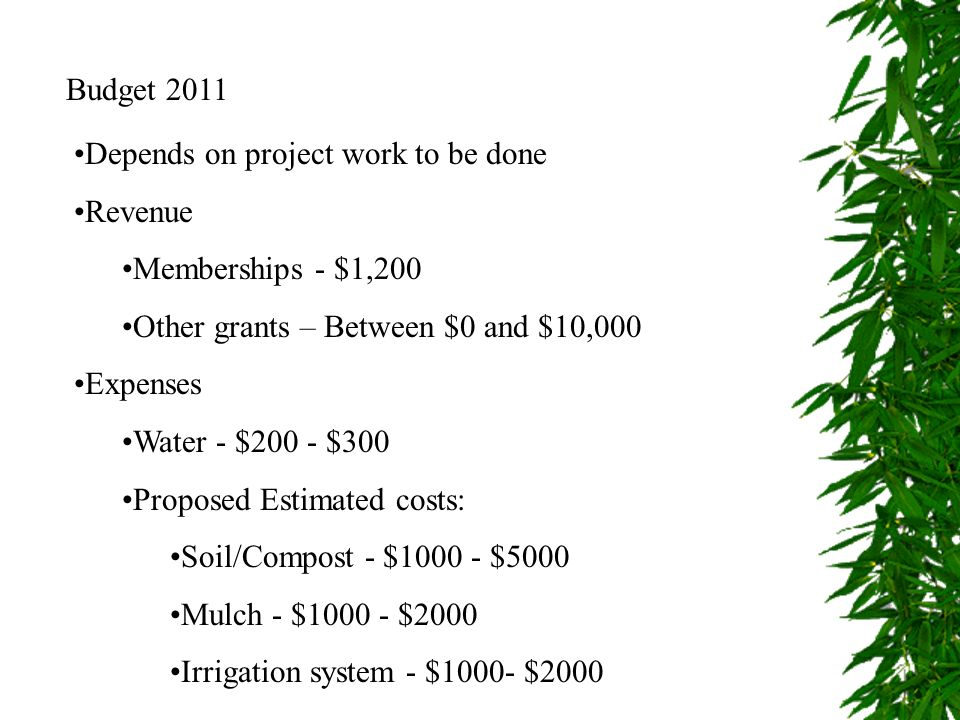 Budget 2011 Depends on project work to be done. Revenue. Memberships - $1,200. Other grants – Between $0 and $10,000.