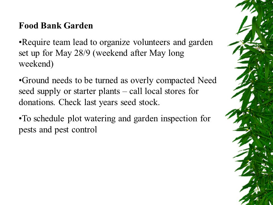 Food Bank Garden Require team lead to organize volunteers and garden set up for May 28/9 (weekend after May long weekend)