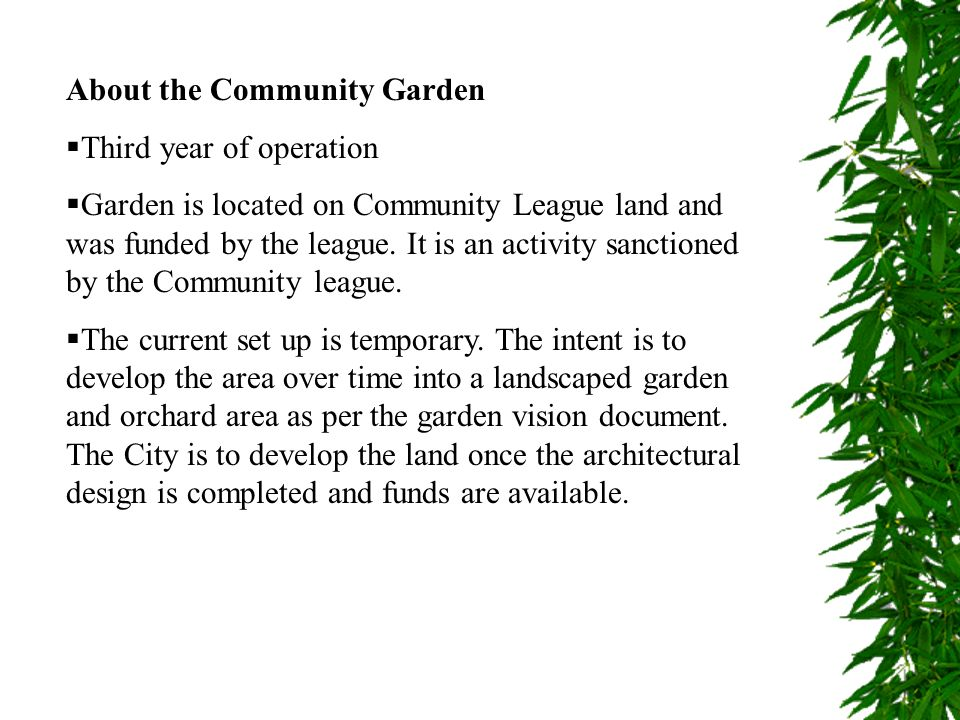About the Community Garden