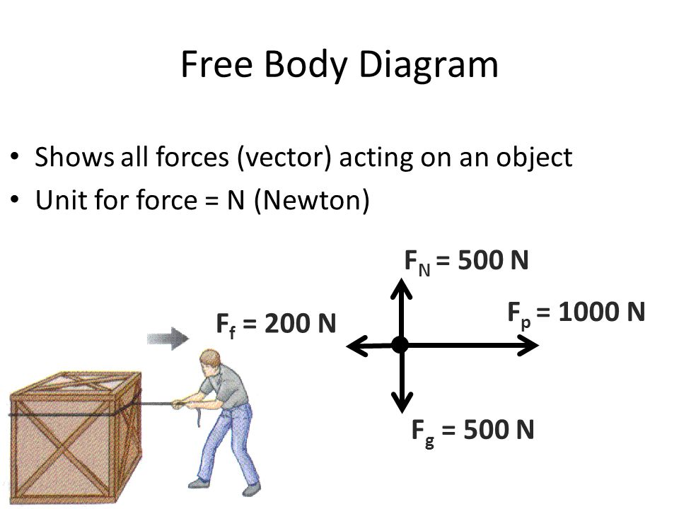 Free Body Diagram Shows all forces (vector) acting on an object