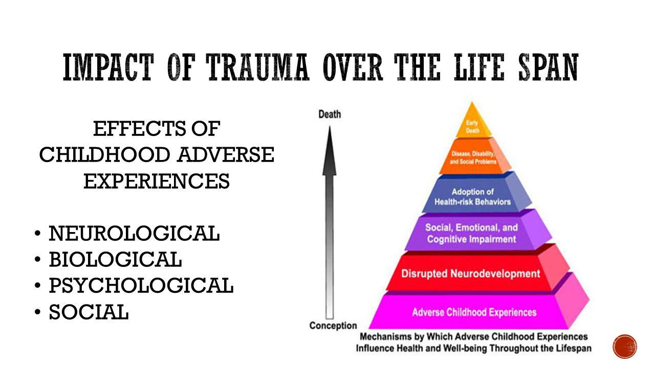 More On Adverse Developmental Impacts >> Creating Trauma Sensitive Schools Ppt Video Online Download