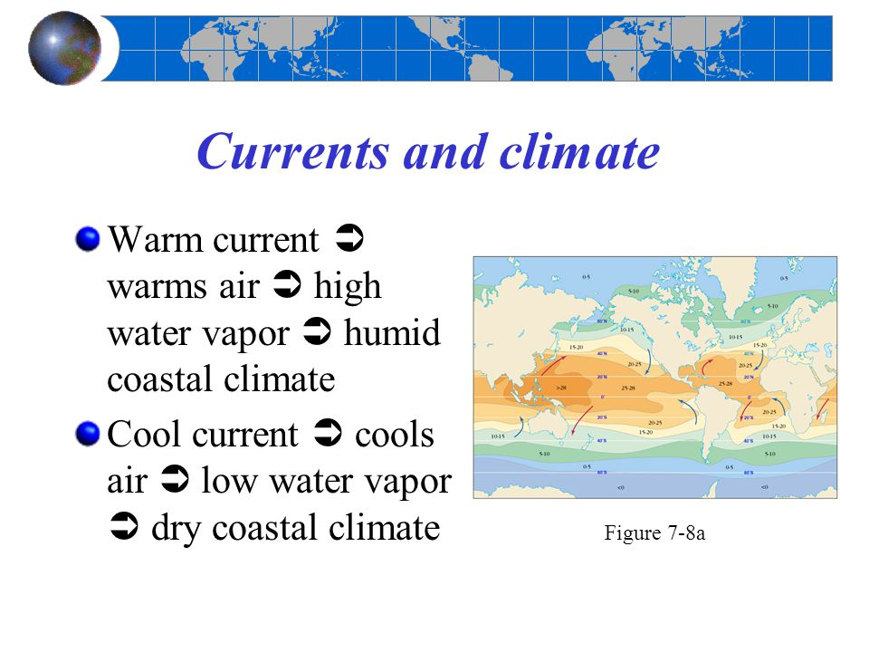 Currents and climate Warm current  warms air  high water vapor  humid coastal climate.