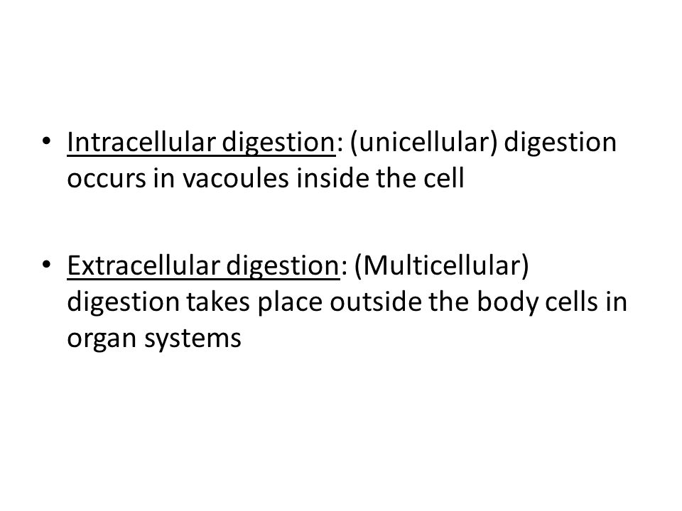 Intracellular digestion: (unicellular) digestion occurs in vacoules inside the cell