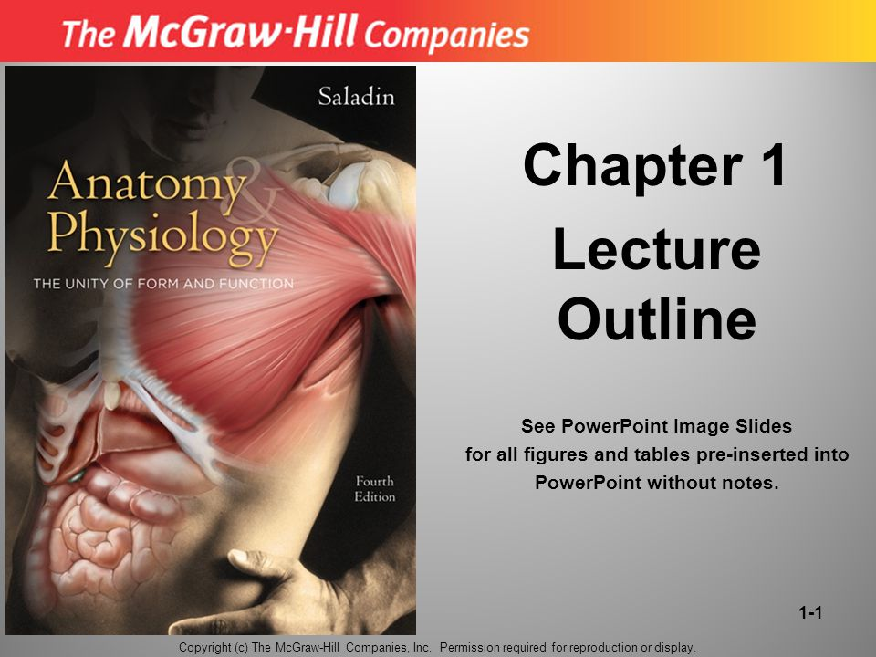 Chapter 1 Lecture Outline - ppt download