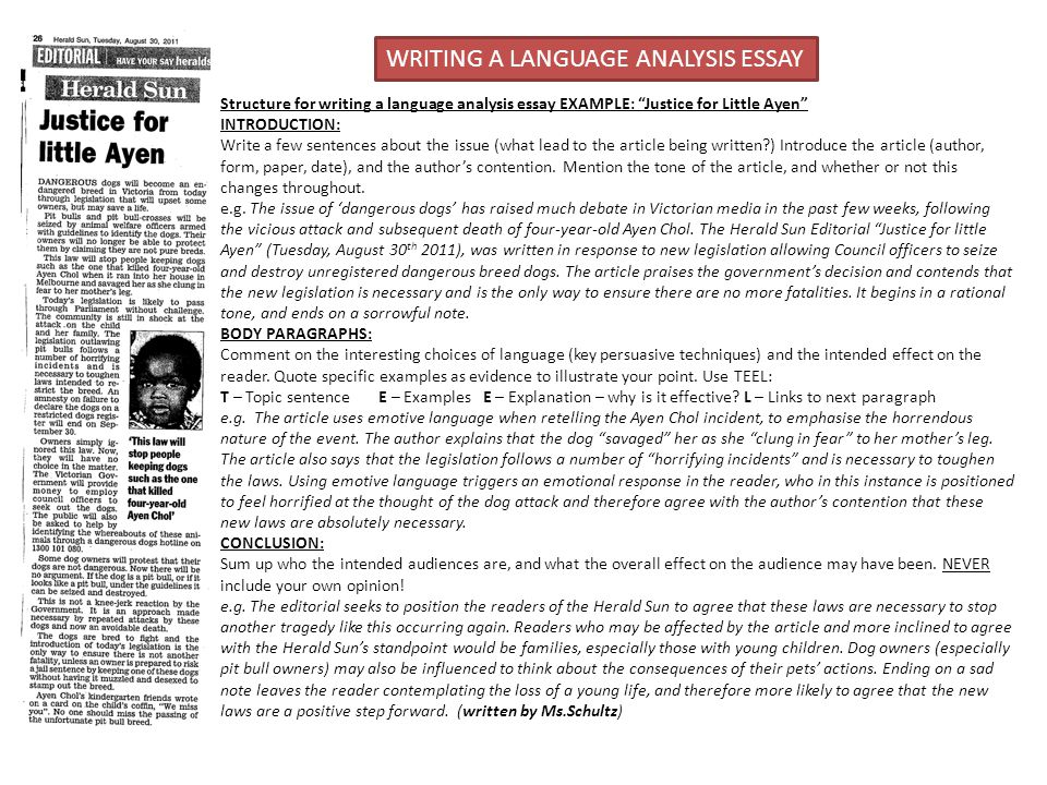 english language history essay icse