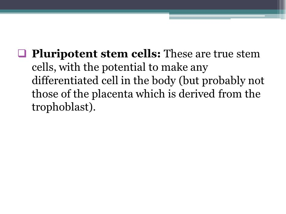 Stem cells Ahmad Sh  Silmi Msc,FIBMS - ppt download