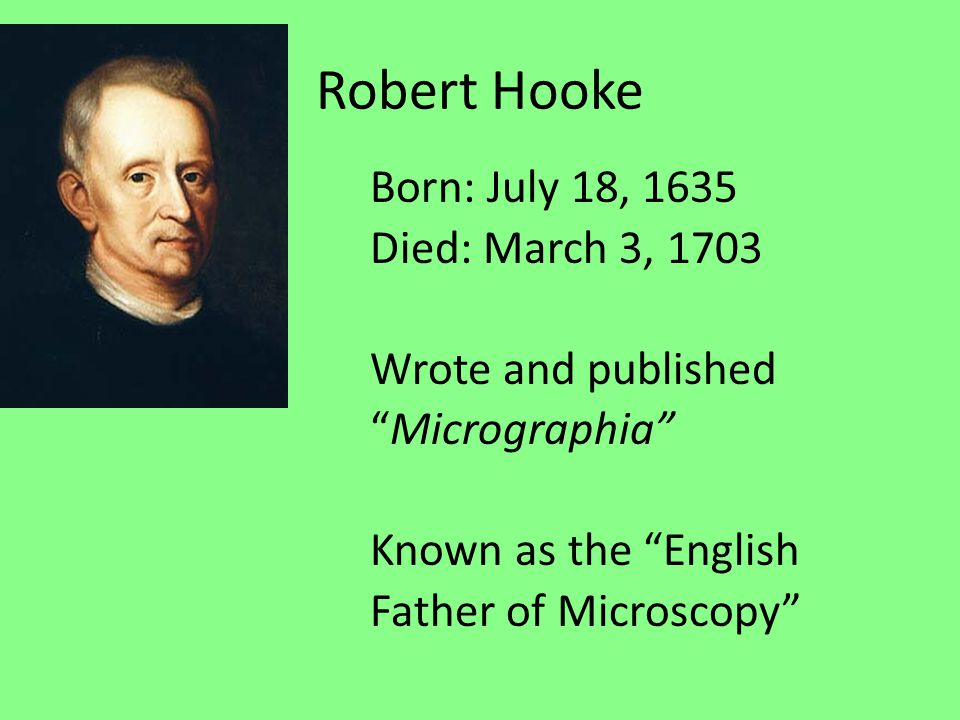 robert hooke biography