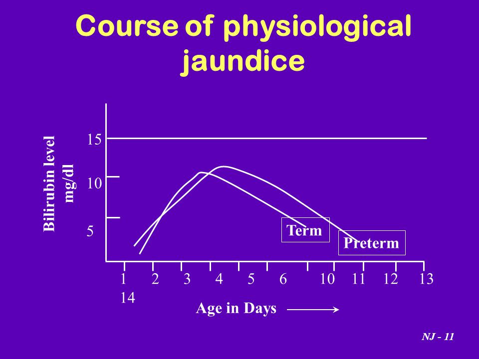 Course of physiological jaundice