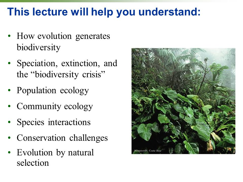 Ecology and evolution: Populations, communities, and ...