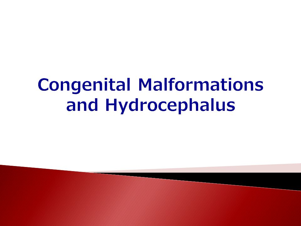 Congenital Malformations and Hydrocephalus