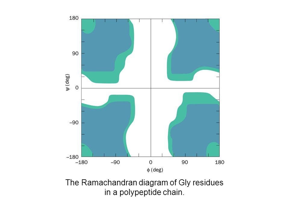The Ramachandran Diagram Ppt Video Online Download