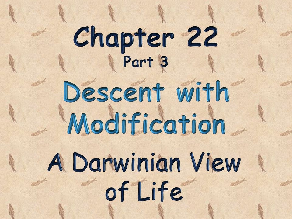 chapter 22 descent with modification Study chapter 22 - descent with modification - multiple choice flashcards from emma diaz's bvms class online, or in brainscape's iphone or android app learn faster with spaced repetition.