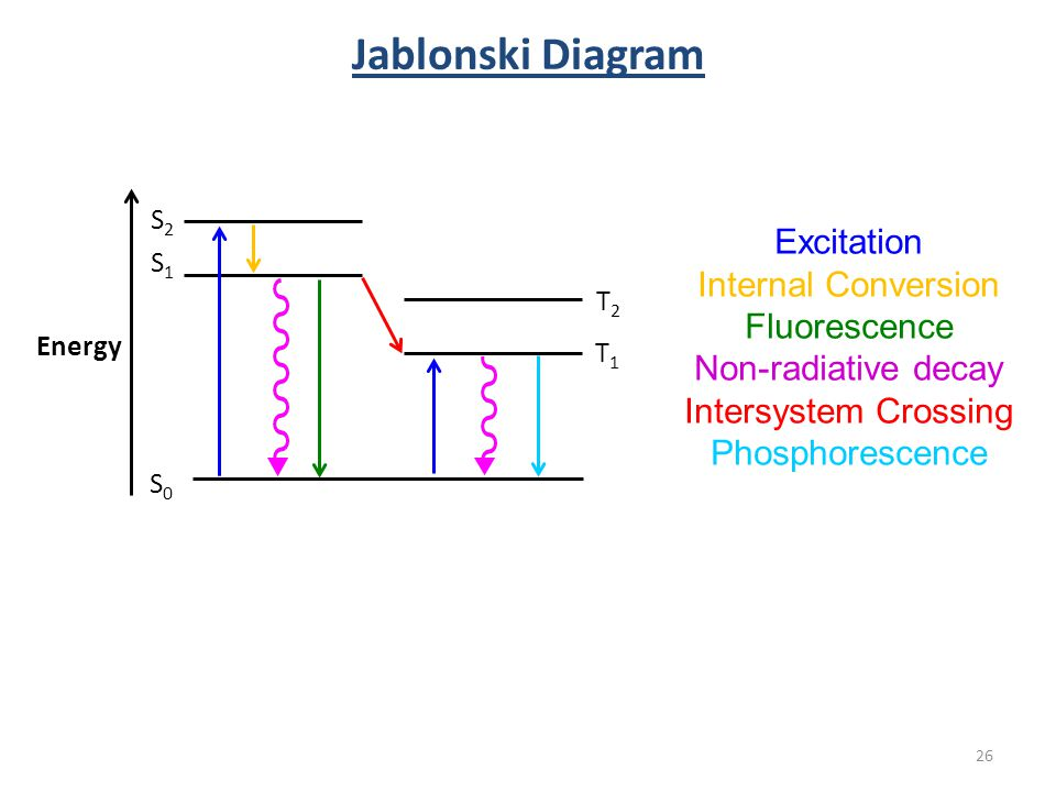 Introduction to molecular photophysics ppt download 26 jablonski diagram excitation internal conversion fluorescence non radiative decay intersystem crossing ccuart Image collections