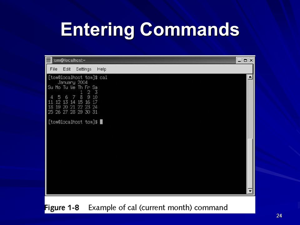 Entering Commands
