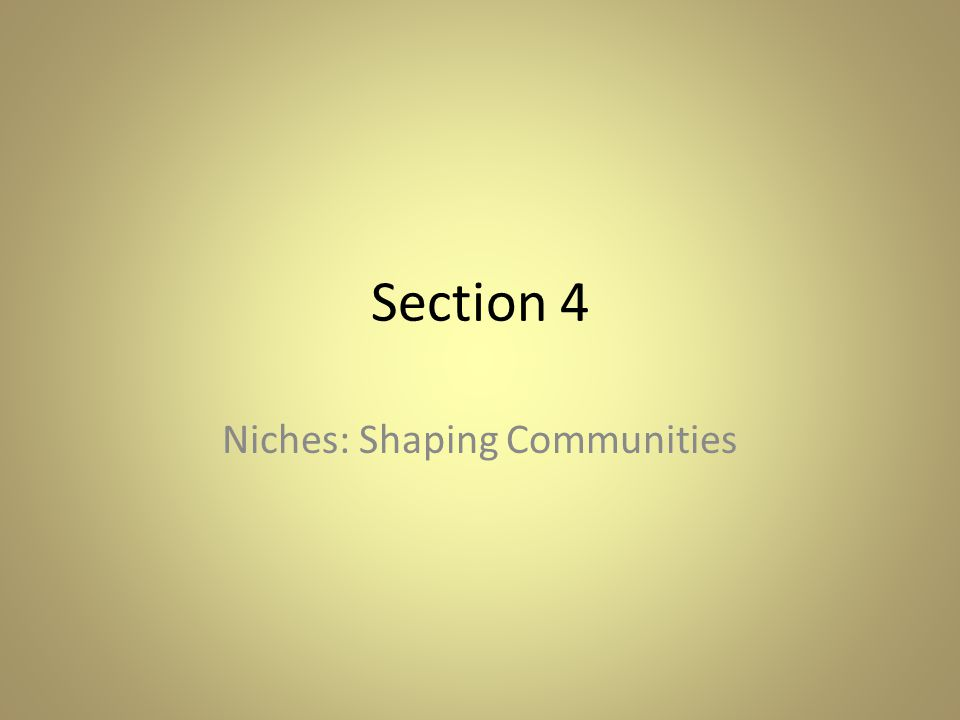 Niches: Shaping Communities