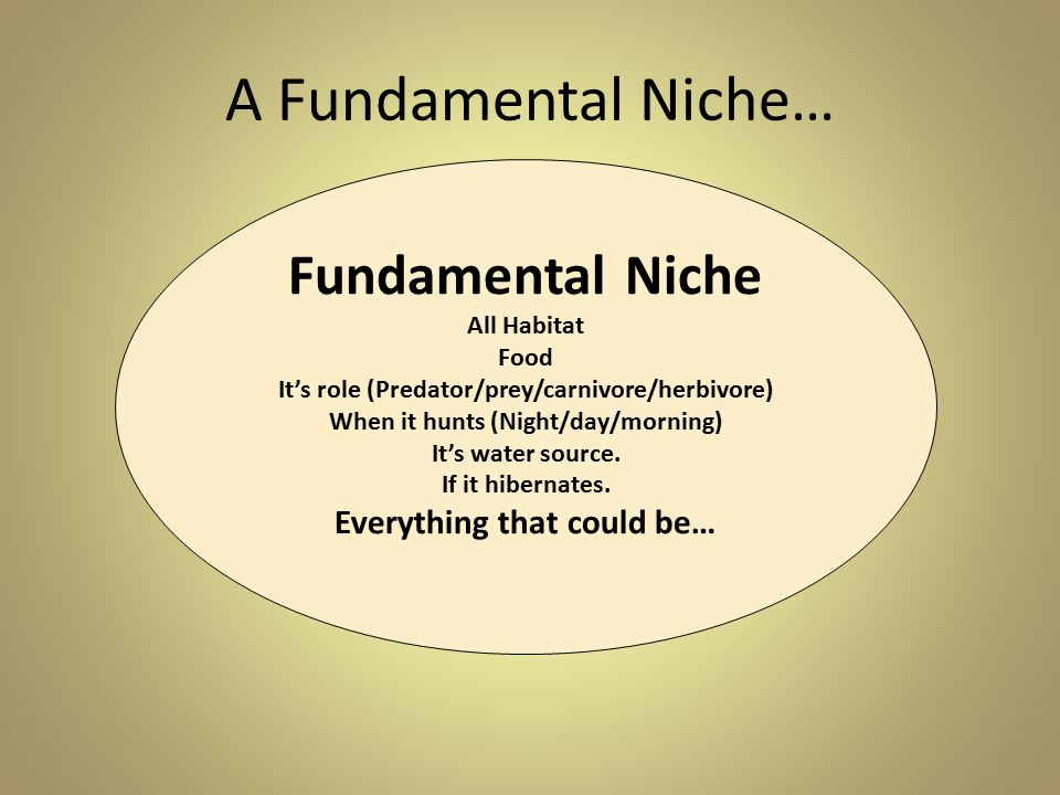 A Fundamental Niche… Fundamental Niche Everything that could be…
