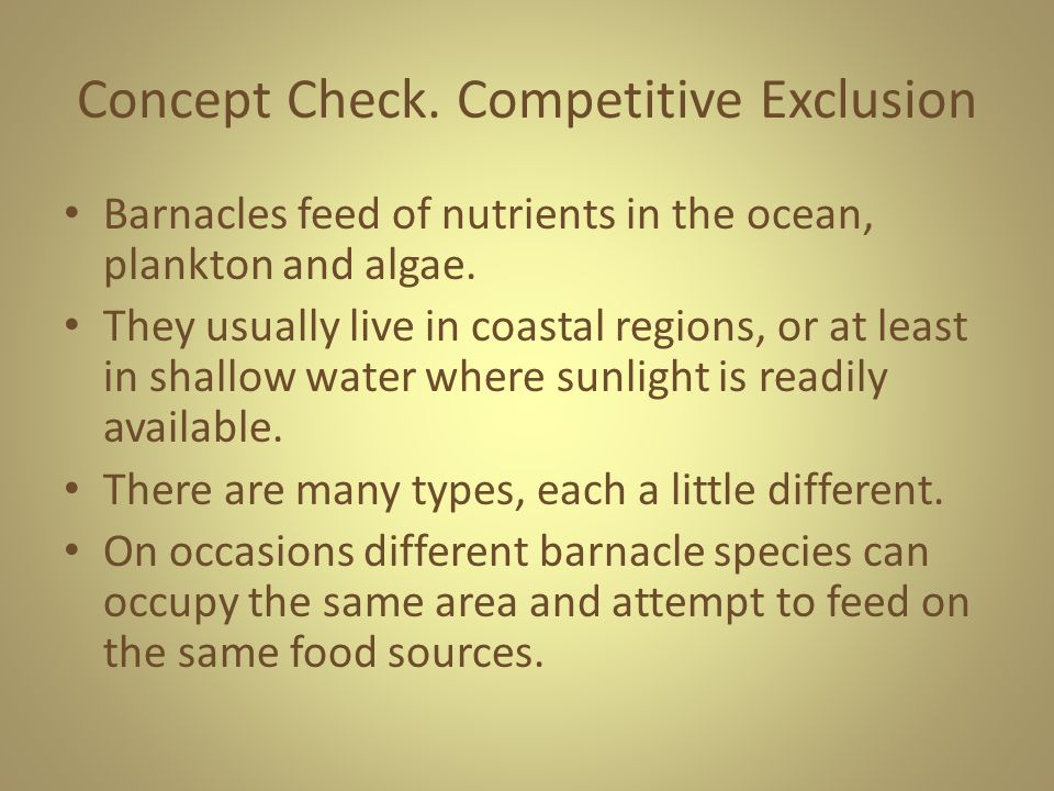 Concept Check. Competitive Exclusion