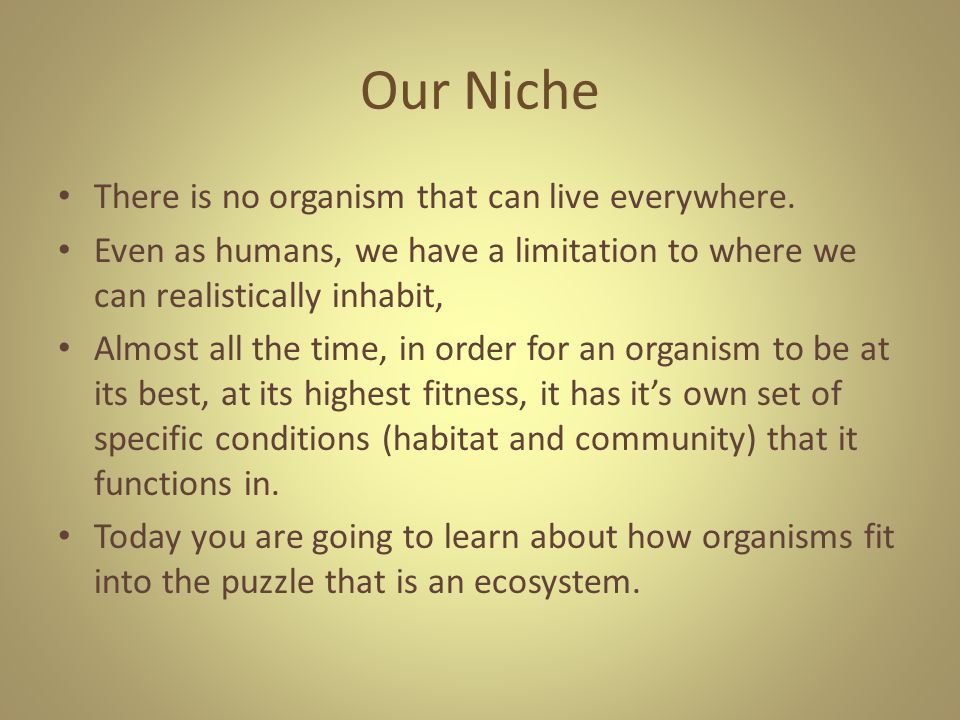 Our Niche There is no organism that can live everywhere.