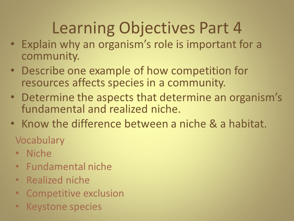 Learning Objectives Part 4