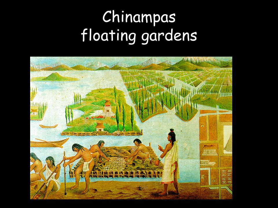 Chinampas floating gardens