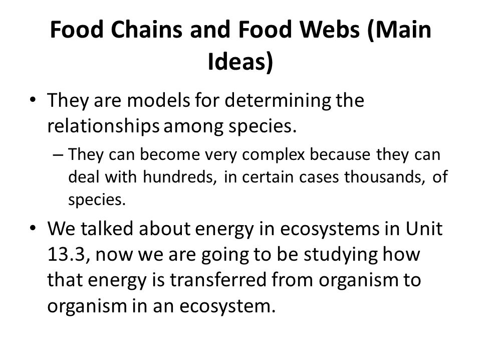 Food Chains Food Webs And Energy Pyramids Ppt Video Online Download