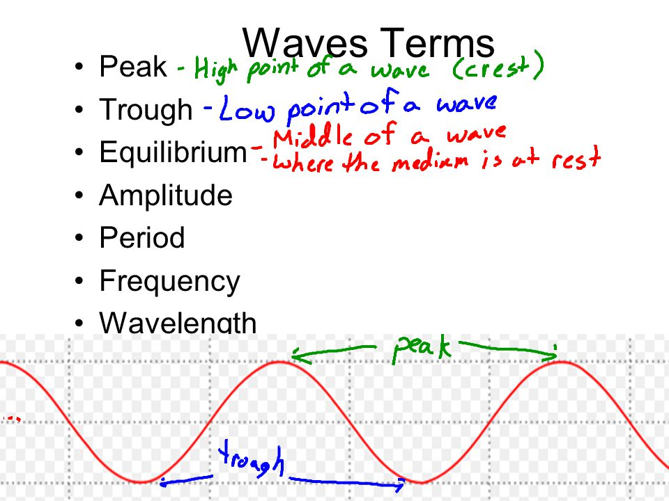 Waves Terms Peak Trough Equilibrium Amplitude Period Frequency