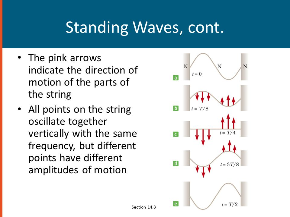 Standing Waves, cont. The pink arrows indicate the direction of motion of the parts of the string.