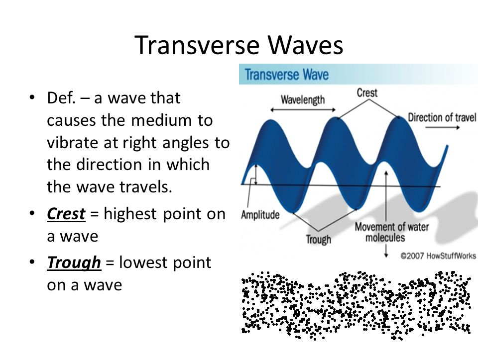 Transverse Waves Def. – a wave that causes the medium to vibrate at right angles to the direction in which the wave travels.