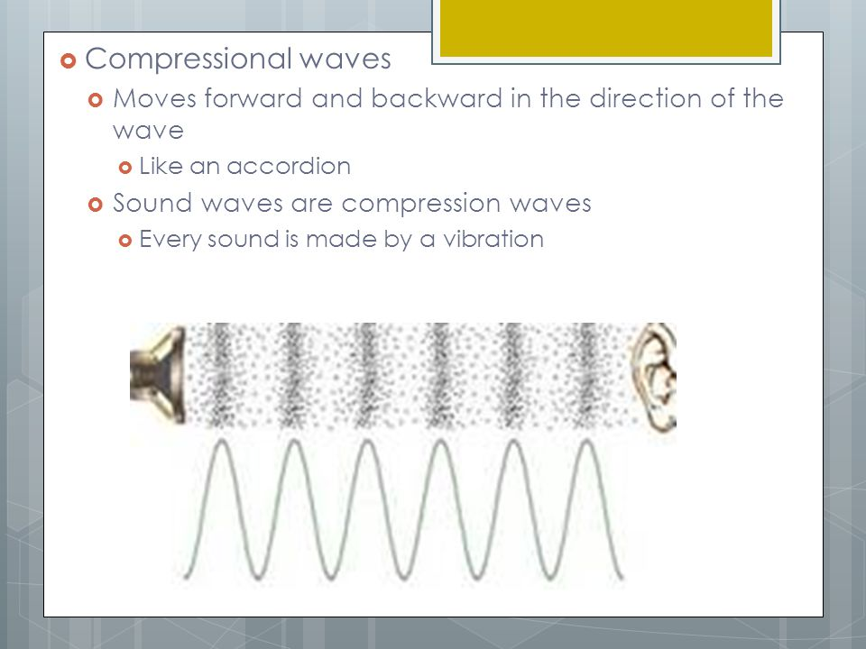 Compressional waves Moves forward and backward in the direction of the wave. Like an accordion. Sound waves are compression waves.