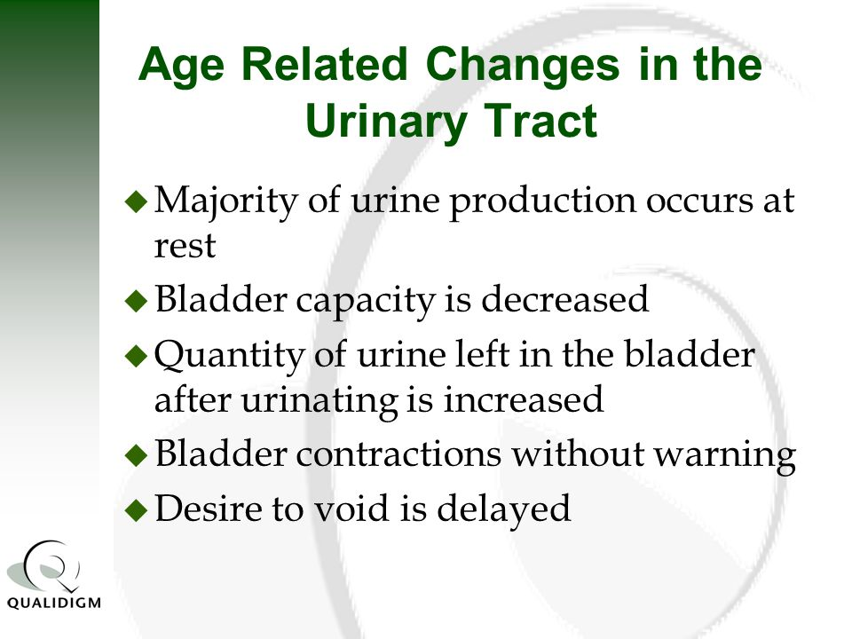 Age Related Changes in the Urinary Tract