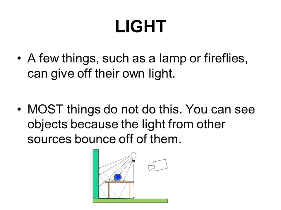 LIGHT A few things, such as a lamp or fireflies, can give off their own light.