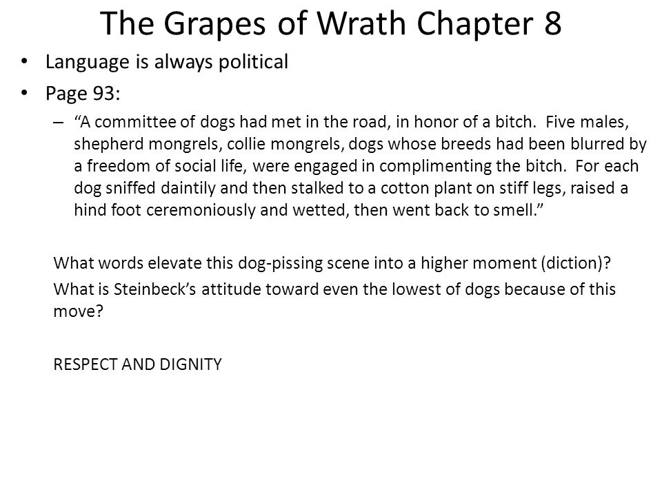 the turtle from the grapes of wrath summary