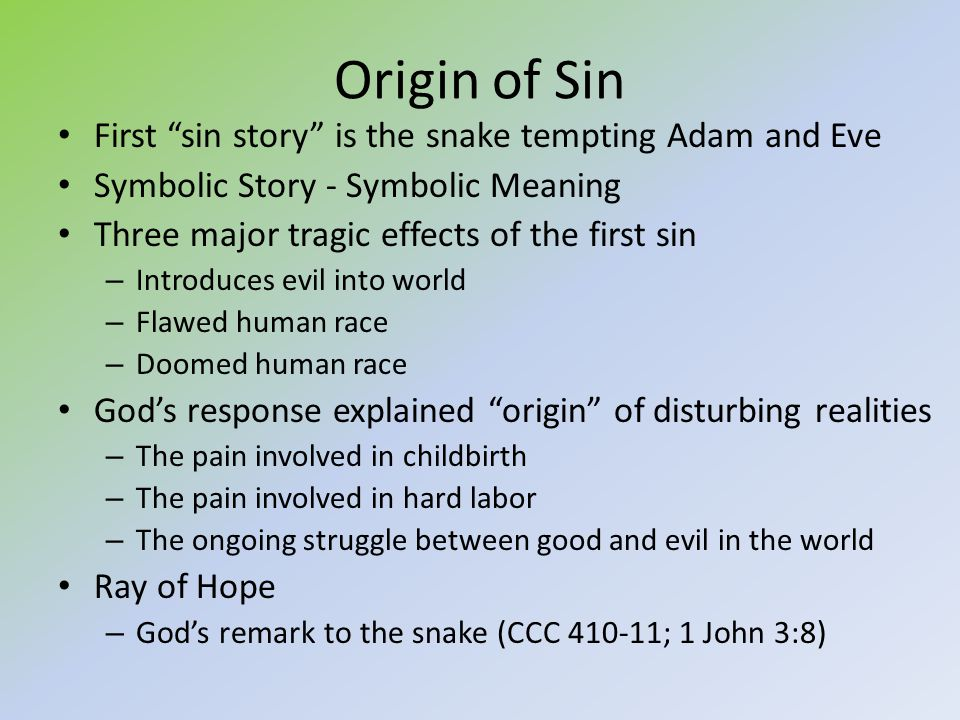 Path Through Catholicism Ppt Video Online Download