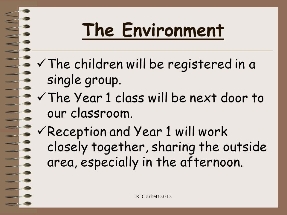 The Environment The children will be registered in a single group.
