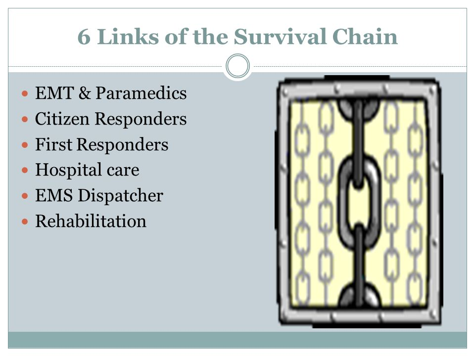 6 Links of the Survival Chain