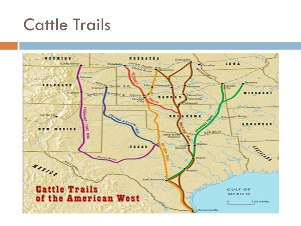 Cattle ranchers EQ: How did the development of the western ... on cattle trail history, cattle trail jobs, cattle drive maps, cattle trail clip art, cattle trail names,